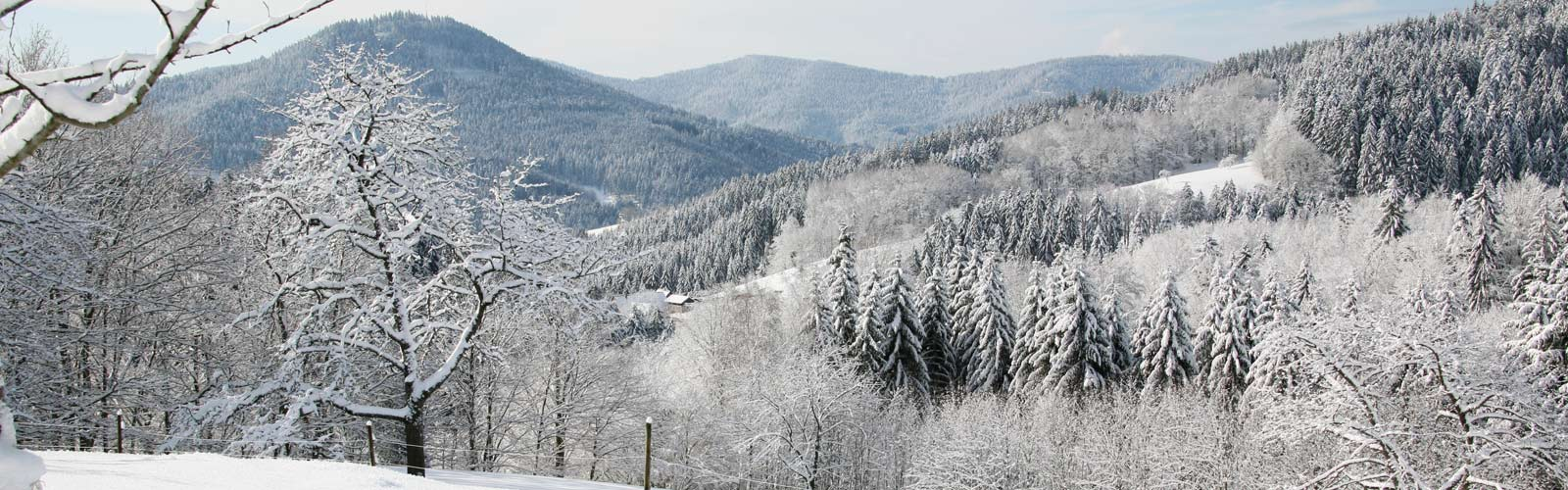 adlerbad_slider_home_winter4