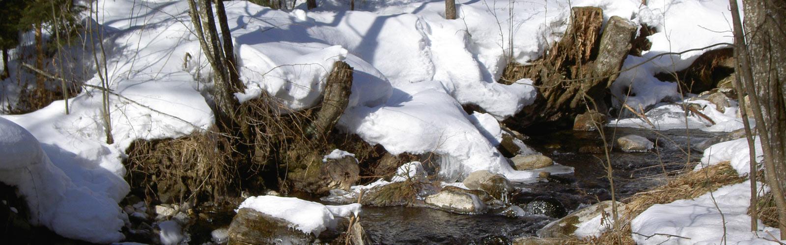 adlerbad_slider_home_winter5